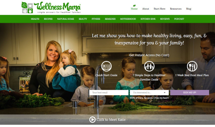 Wellness Mama - Most Famous Mommy Blogs